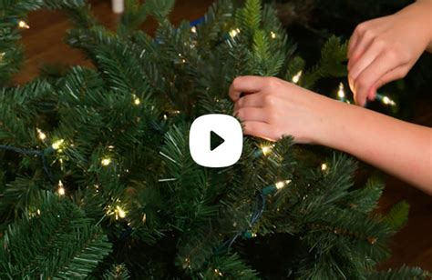 how to string lights on a christmas tree trees decorations at home