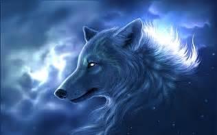 wolf sprüche wolf wallpapers hintergründe 2560x1600 id 118659