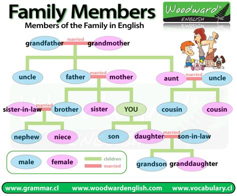 how to find family members members of the family