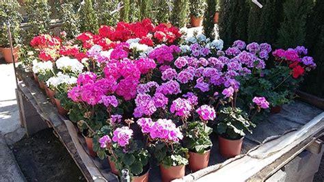 agenda del jard 237 n de abril centro de jardiner 237 a s 225 nchez