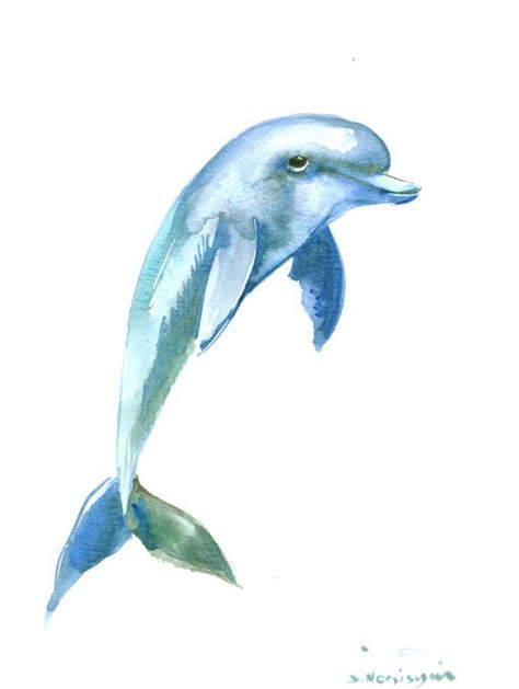 dolphin painting original watercolor painting