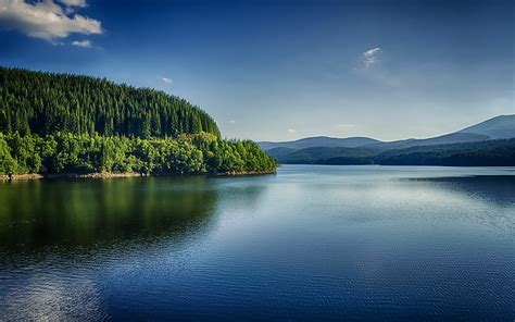 Beautiful River Forest Romania Wallpapers
