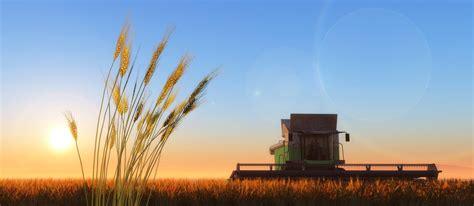 digital agriculture  microsoft erp solution  terna