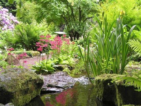 Förderverein Botanischer Garten Braunschweig by Foto Tu Braunschweig Botanischer Garten