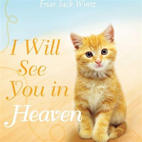 do cats go to heaven reddit