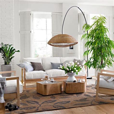 zimmerpflanzen auswaehlen aber wie innendesign