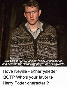 25+ Best Memes About Harry Potter Characters | Harry ...