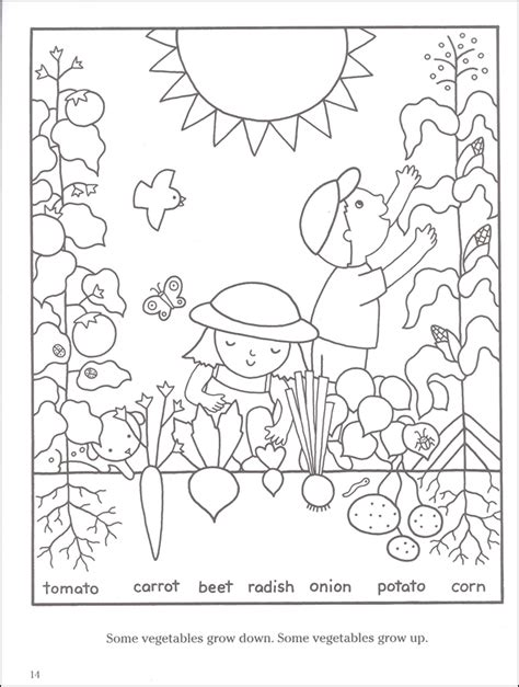 gardening pictures to colour realistic coloring pages vegetable garden coloring pages