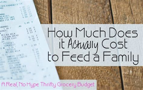 how much does it actually cost to feed a family all in all