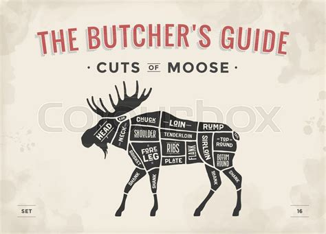 cut  meat set poster butcher diagram scheme moose