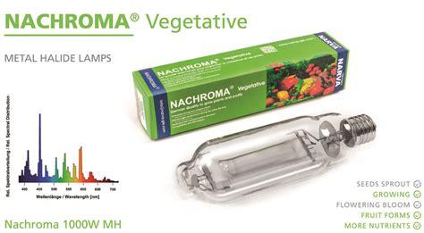 nachroma vegetative