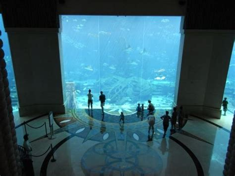 dubai hotel aquarium atlantis aquarium viewed from the stairs picture of atlantis the