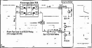 Circuit Description - Toyota Hilux 1kz Te Repair