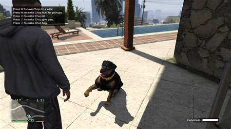 Grand Theft Auto V Franklin Chops Ifruit App Tricks