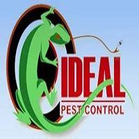 ideal pest control pest control  savannah ga reviews