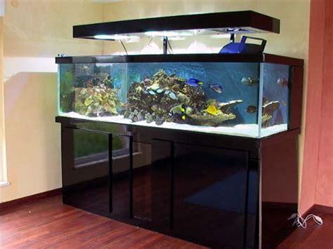 aquarium 500 litres occasion mise en place d un aquarium r 233 cifal de 1800l aquarium r 233 cifal aquarium marin aquarium eau de