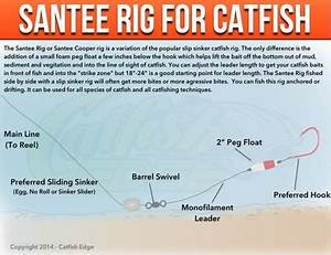 Santee Cooper Rig For Catfish  A Catfishing Essential