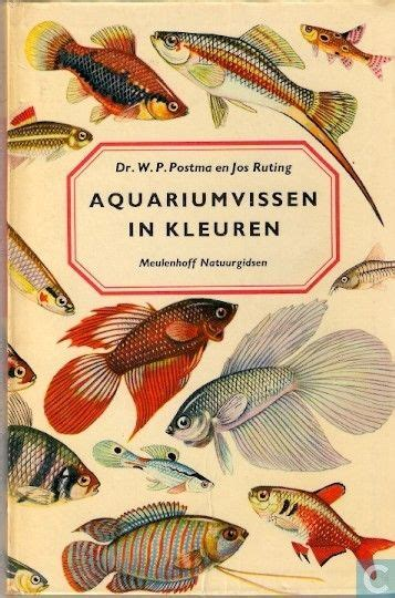 aquarium cover designs woodworking projects plans