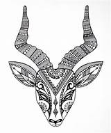 Horns Coloring Animals Colour sketch template