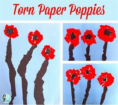 Remembrance Grade Easy Poppy Craft Gradeonederful Torn