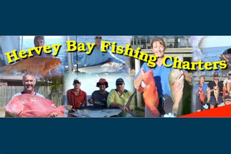 Fishing Boat Charters Hervey Bay by Hervey Bay Fishing Charters Bush N Beach Fishing Magazine