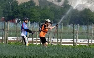 Wann Stechen Mücken Nicht Mehr : wann ist viel sport nicht mehr gesund ~ Orissabook.com Haus und Dekorationen