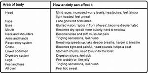 The Anxiety Nervous System