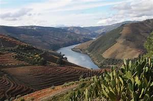 Fluss In Portugal : malerisch flusskreuzfahrten auf dem douro in portugal ~ Frokenaadalensverden.com Haus und Dekorationen