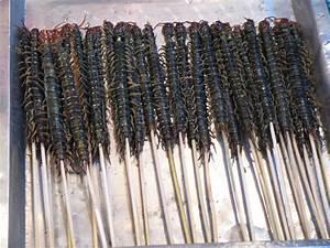 File:Centipedes as street food.jpg