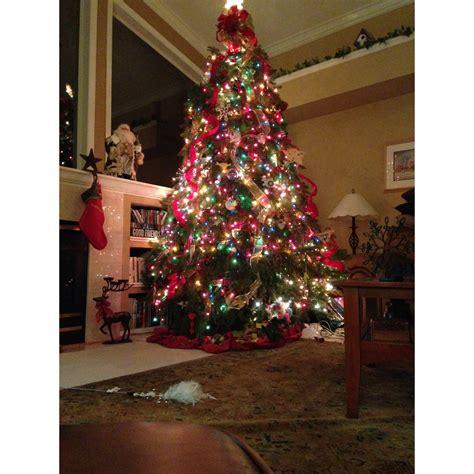 christmas tree lighting events near me dave 39 s christmas tree lot coupons near me in brandon