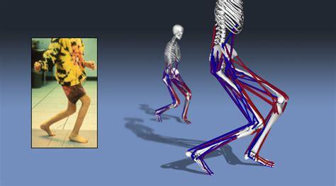 Human Movement Dynamics and Control