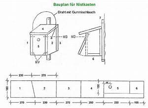 Nistkästen Selber Bauen : bauplan f r nistk sten ~ Eleganceandgraceweddings.com Haus und Dekorationen