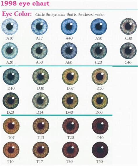 eye colors list 17 best ideas about eye color charts on