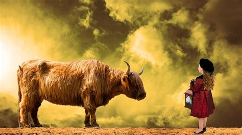 Wer Passt Zum Stier Mann by Aszendent Stier Alles Was Du Wissen Musst Um Ihn Zu