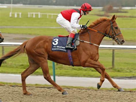race horses citation ruffian horse