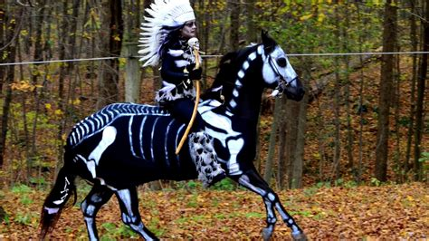 halloween horse costumes youtube