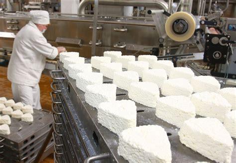 cottage cheese production cottage cheese production at the babushkina krynka company