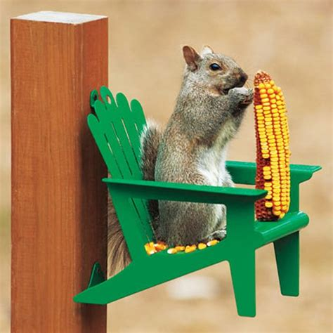 Squirrel Feeder Retro Chair by Squirrel Chair A Chair For Squirrels