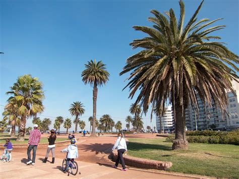 Things to Do in Uruguay - Activities & Attractions - Go ...