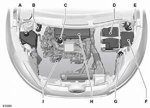 Ford Fiesta  Motorraum -  U00dcbersicht - 1 4l Duratorq-tdci  Dv  Diesel - Wartung