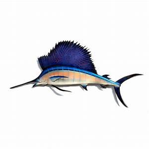 Image Gallery sailfish art