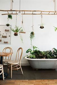 Echelle Decorative Casa : inspiration d co l invasion des plantes vertes ~ Teatrodelosmanantiales.com Idées de Décoration