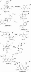 Fragmentation Reactions Using Electrospray Ionization Mass