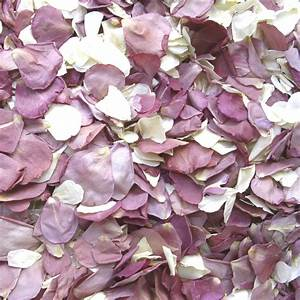 Lilac Rose Petal Confetti From The Real Flower Petal