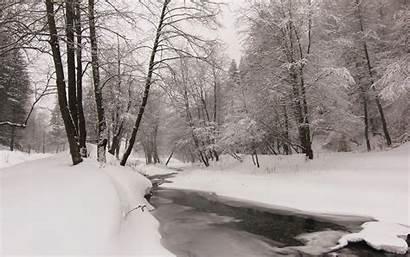 Winter Late Desktop Wallpapers Nicubunu Creek Nicu