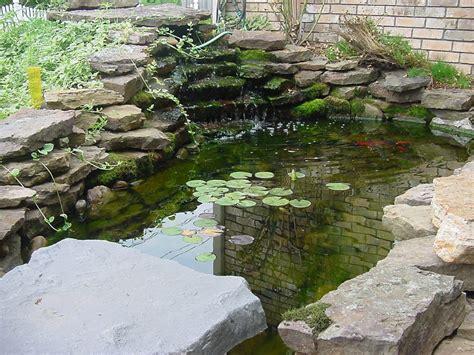 koi fish pond design ideas  backyard hometrendy young