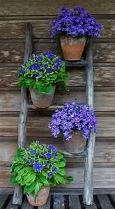 Country Garden Design : 17 b sta bilderna om gardening ideas diy p pinterest ~ Sanjose-hotels-ca.com Haus und Dekorationen