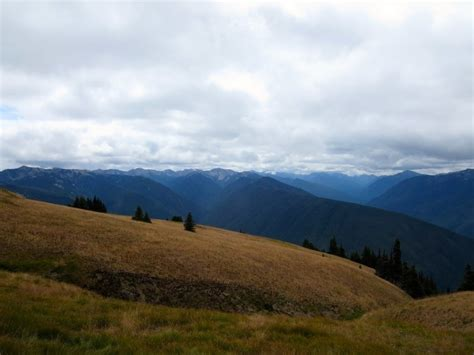 Olympic National Park Washington Highlights And