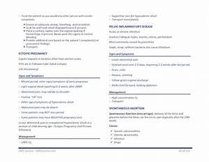 Nremt Emt Paramedic Exam Study Guide