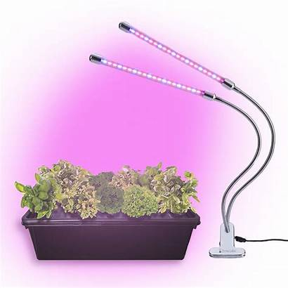 Lights Grow Led Plant Brite Labs Growing